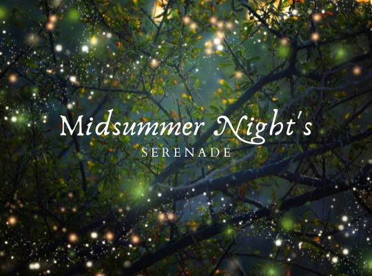 Midsummer Night's Serenade for website